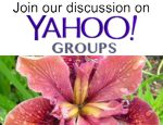 Join our discussion on Yahoo Groups!